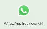 Что такое Whatsapp business api