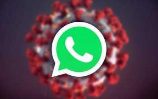 WhatsApp в борьбе с пандемией: COVID-19, помощь мессенджера