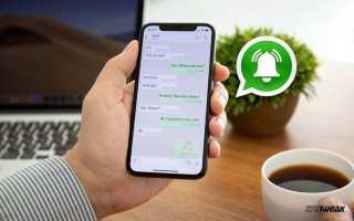 Обновленный WhatsApp: напоминания, оповещения