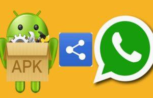 Что такое и зачем нужен Apk-файл WhatsApp